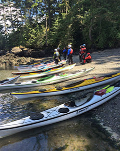Working as a sea kayak guide in the San Juan Islands can be one of the most rewarding summer jobs you could ask for.