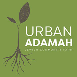 Urban Adamah is a residential leadership training program for young adults that integrates urban organic farming, social justice work and progressive Jewish living and learning in Berkeley, California.