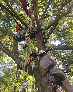 Adventure camps, ropes courses, team challenges, backpacking, climbing, primitive skills, kayaking and rafting, and the wilderness itself will be used as a catalyst to build relationships and produce victories that grow awareness, efficacy, connection, purpose, and hope.