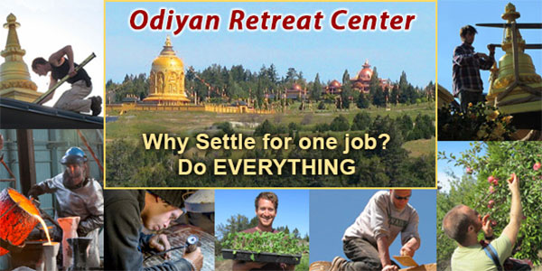 Live and work at Odiyan Retreat Center on one thousand breathtakingly beautiful acres overlooking the Pacific Ocean in Northern CA.