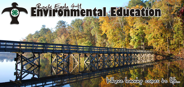 Rock Eagle 4-H Environmental Education Program: Where Learning Comes to Life!